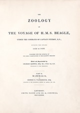 'Mammalia' (1839), 'The Zoology of the Voyage of HMS Beagle'