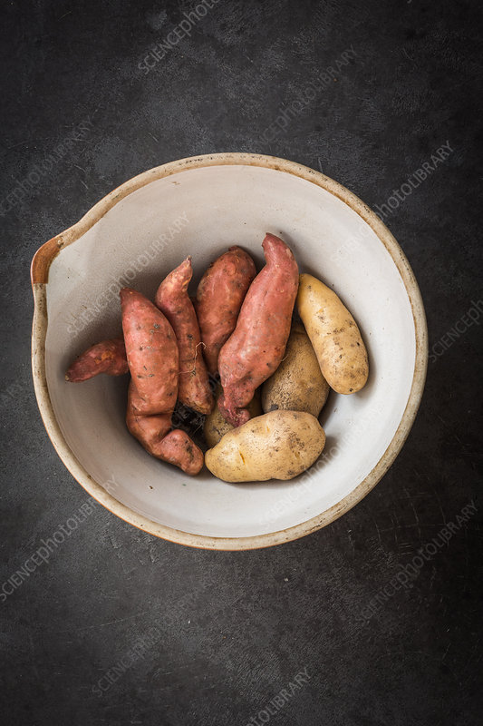 Sweet potatoes (Ipomoea batatas) and potatoes