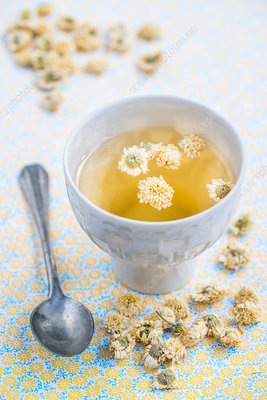 Herbal tea of dry blossoms of camomile