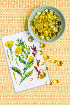 Capsules of evening primrose (Oenothera biennis)