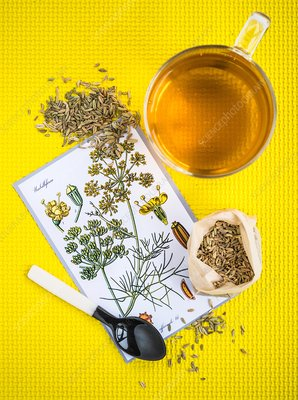 Fennel herbal tea