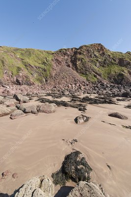 Cliff rockfall at West Dale beach, Pembrokeshire, UK