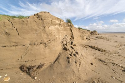 Sandune erosion after storm surge
