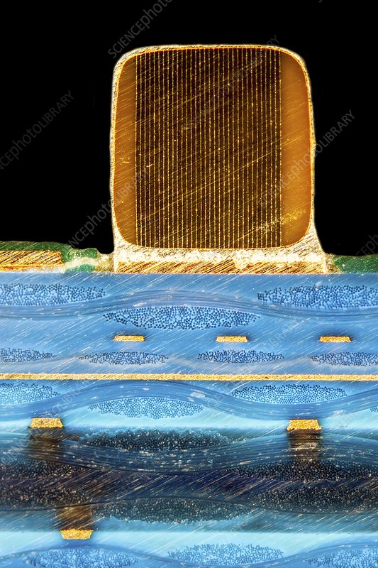 Ceramic capacitor on circuit board, light micrograph
