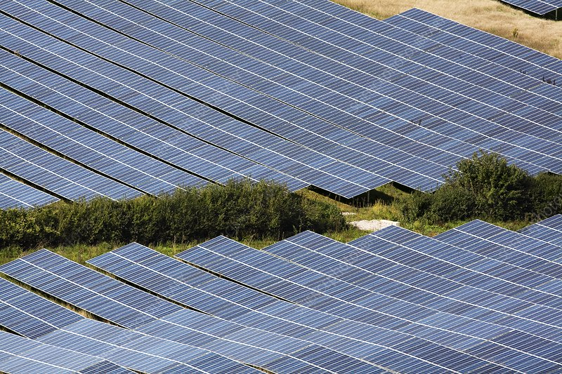 Milborne Port Solar Farm panels