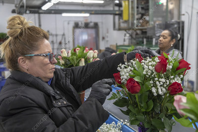 Imported flower warehouse, USA