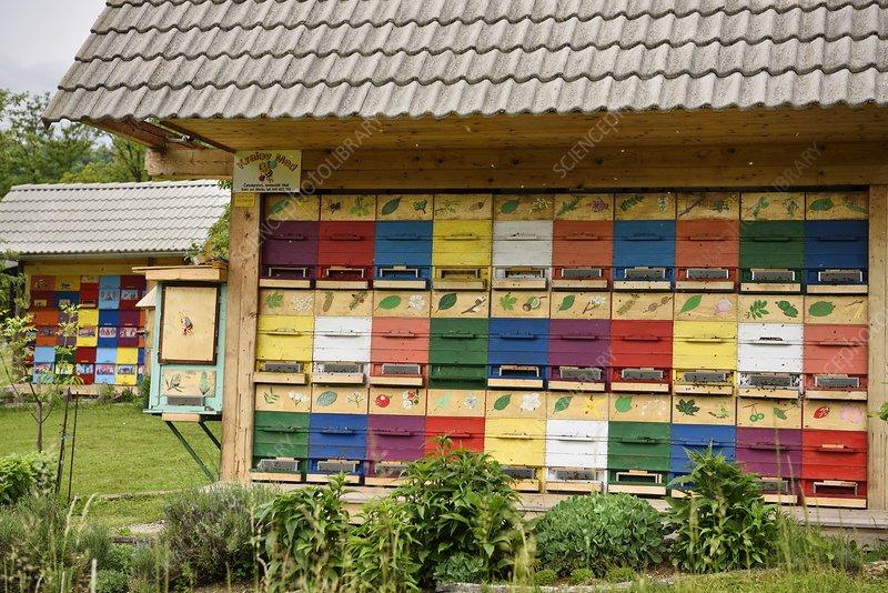 Traditional apiary, Slovenia