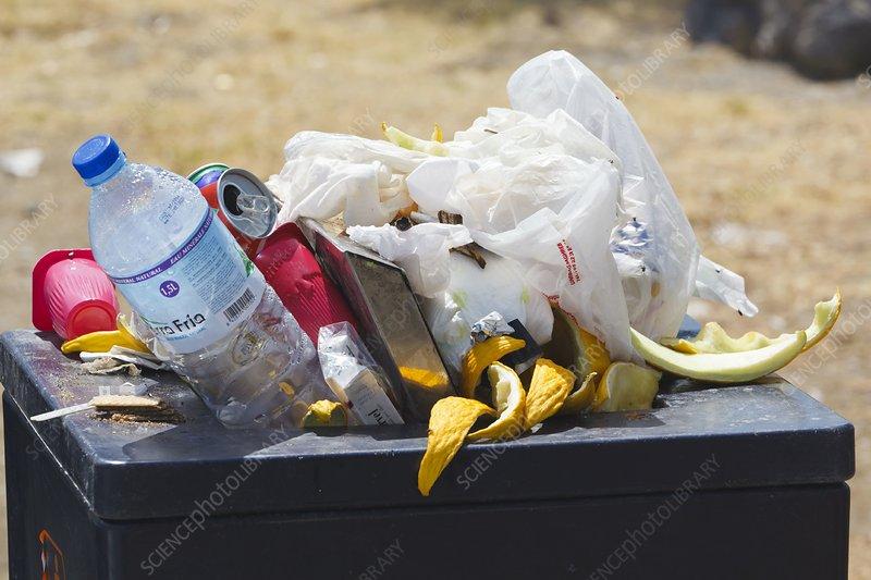 Overflowing public rubbish bin