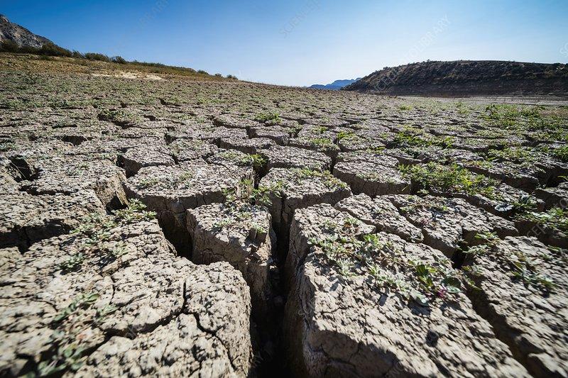 Drought-cracked soil, Spain