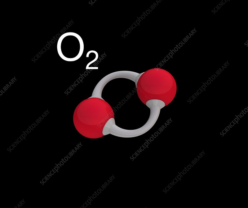 Oxygen molecule, illustration