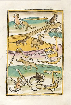 Hybrid and mythological creatures, 15th century