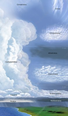 Illustration of cloud types