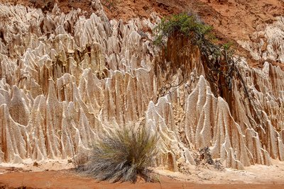 Sandstone erosion due to deforestation