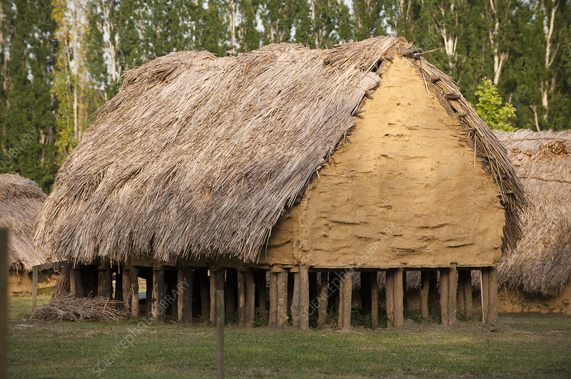 Reconstructed Neolithic hut, La Draga site