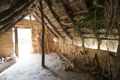 Interior of reconstructed Neolithic hut, La Draga site