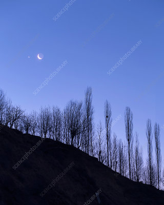 Moon and Venus at dawn