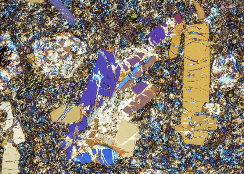 Phonolite mineral rock crystals, polarised light micrograph