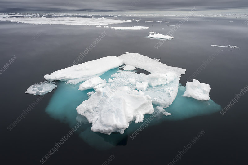 Ice floe in the arctic ocean