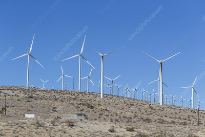 Windmills on hillside, California, USA