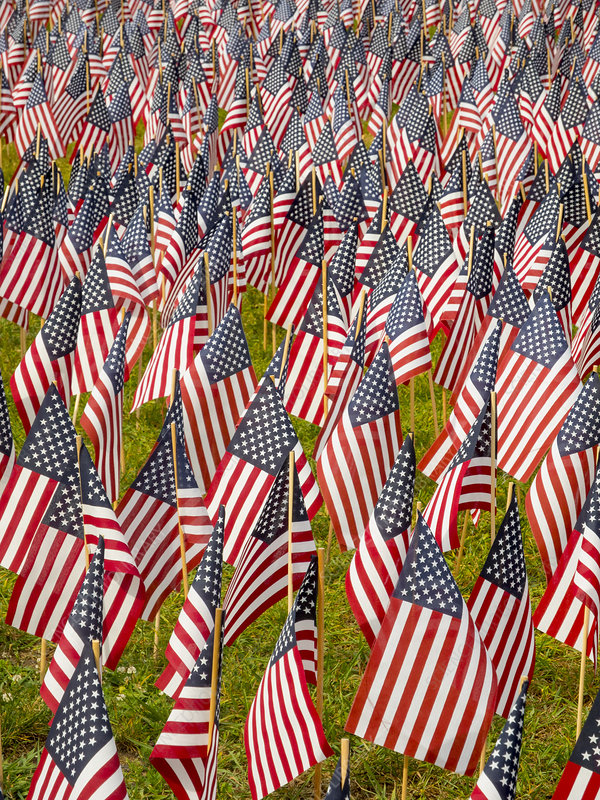 Memorial Day Flags, Boston Common
