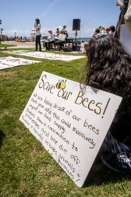 Save our Bees Sign, GMO Demonstration