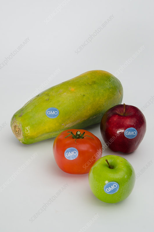 Genetically Modified Produce, Fruits