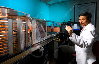 Molecular Biologist Holding Yeast Genome Microarray