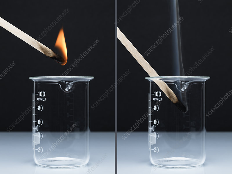 Testing for Carbon Dioxide