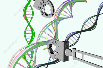 Genetic Engineering, Conceptual Illustration