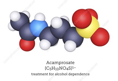 Acamprosate alcoholism treatment molecule