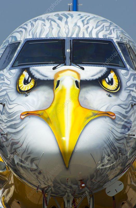 Aircraft eagle face