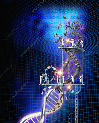 Scientist working on DNA, illustration