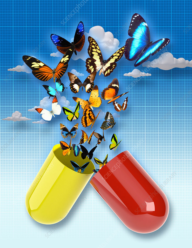 Butterflies emerging from capsule, illustration