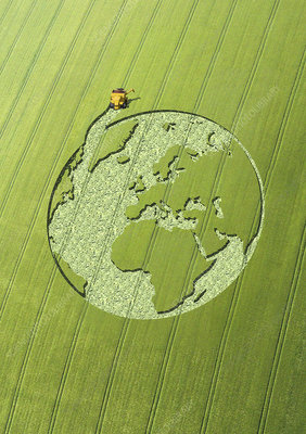 Globe crop circle in green field, illustration
