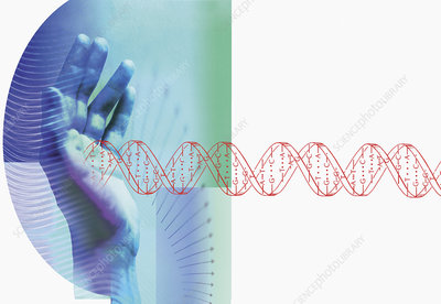 Genetics research, conceptual illustration