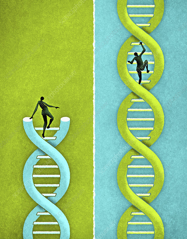 People climbing strands of DNA, illustration