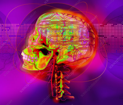 X-ray of human skull and microchip, illustration