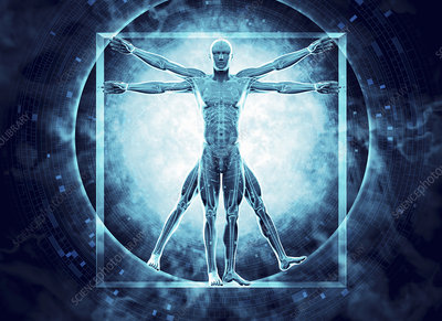 Vitruvian Man with DNA coding, illustration