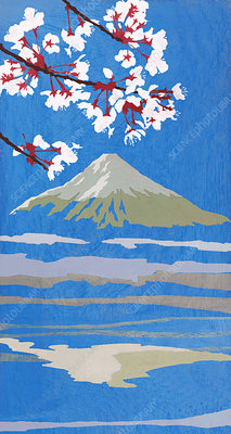 Blooming flowers and Mt Fuji, illustration
