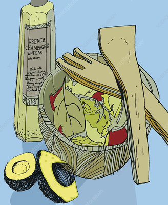 Salad, avocado and vinegar bottle, illustration