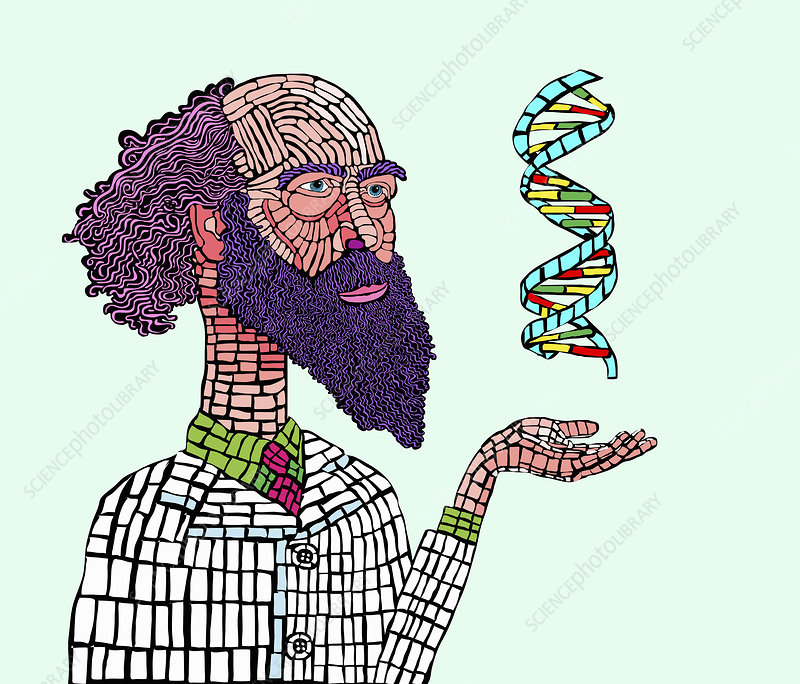 Scientist studying DNA double helix, illustration