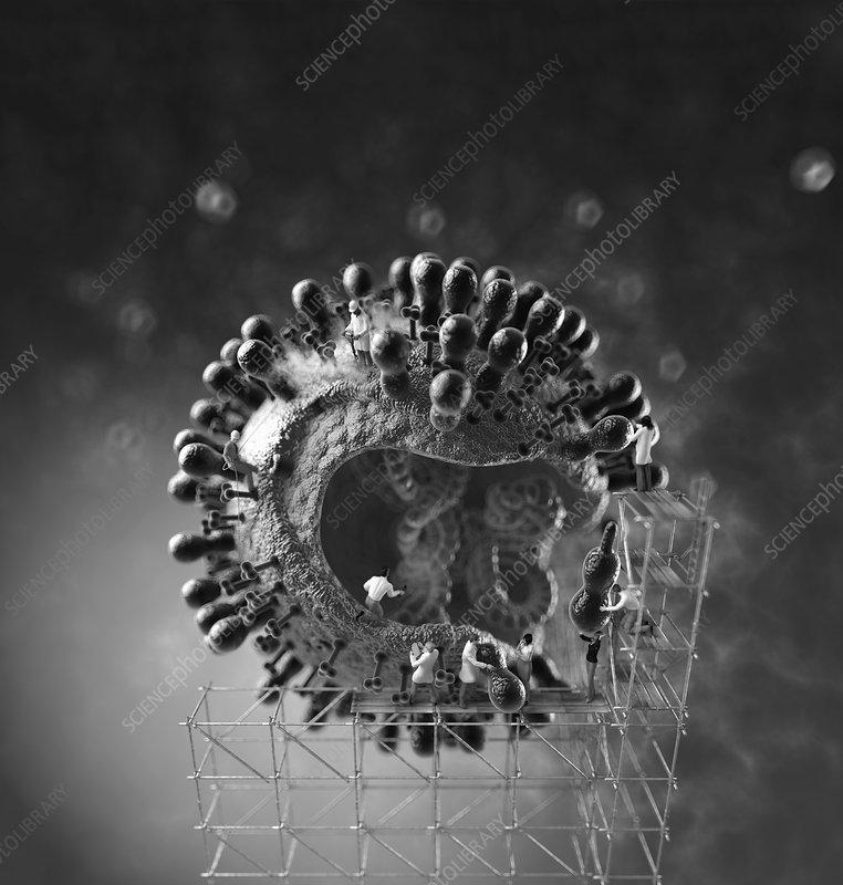 Scientists working on virus, illustration
