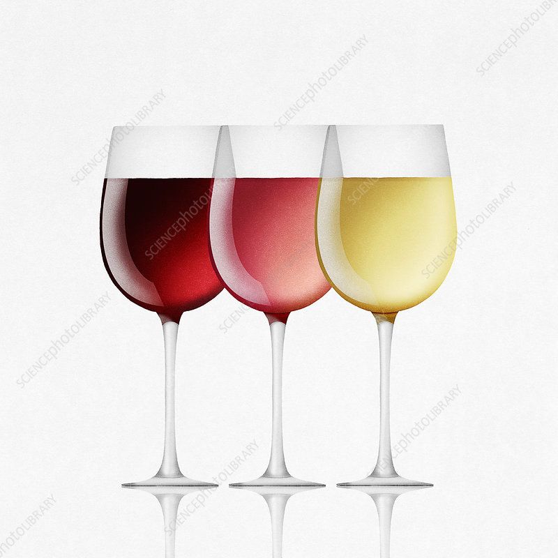 Red, white and rose wine in glasses, illustration