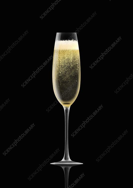 Single champagne flute, illustration