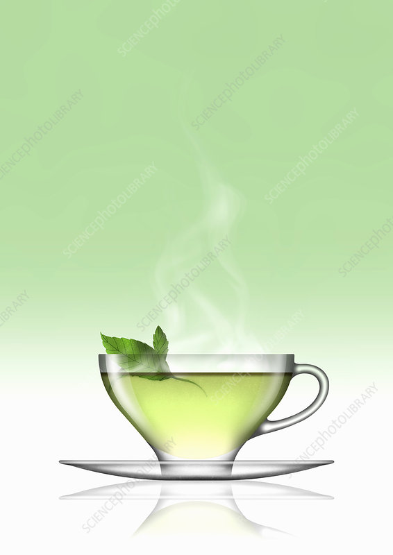 Mint tea in glass cup and saucer, illustration