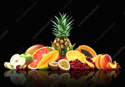 Range of fresh fruit, whole, halved and slices, illustration