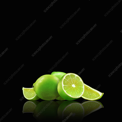 Whole and cut limes, illustration