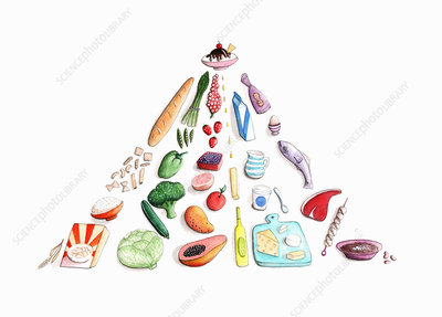Foods arranged in pyramid, illustration