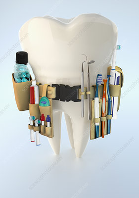 Large tooth with dental supply tool belt, illustration