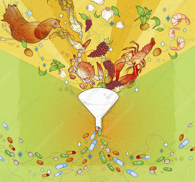 Fresh foods falling into funnel, illustration